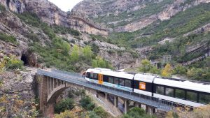 Tren barranc bosc