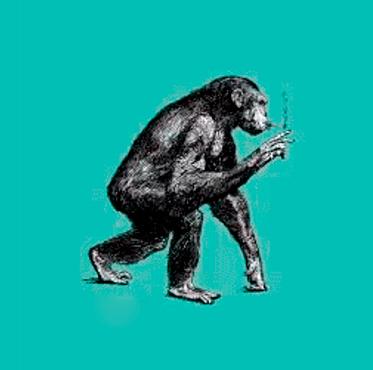 Simi fumant